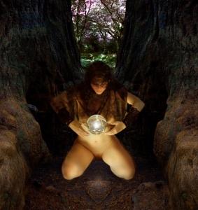 Redwood Vision