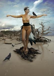 Crow Tango